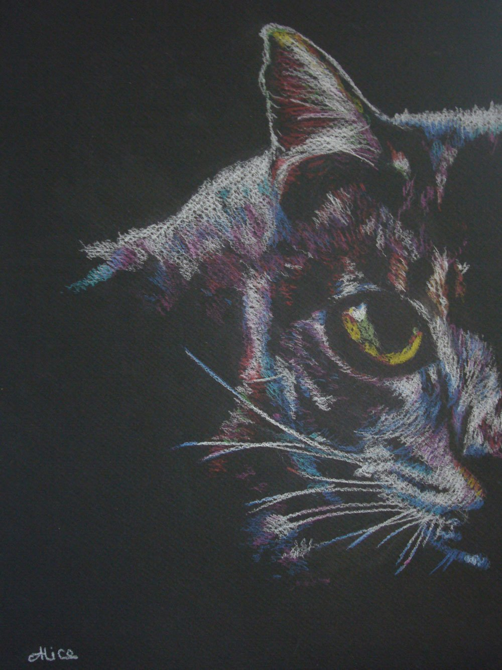 Pixel le chat aux crayons de couleur par Alice Gerfault