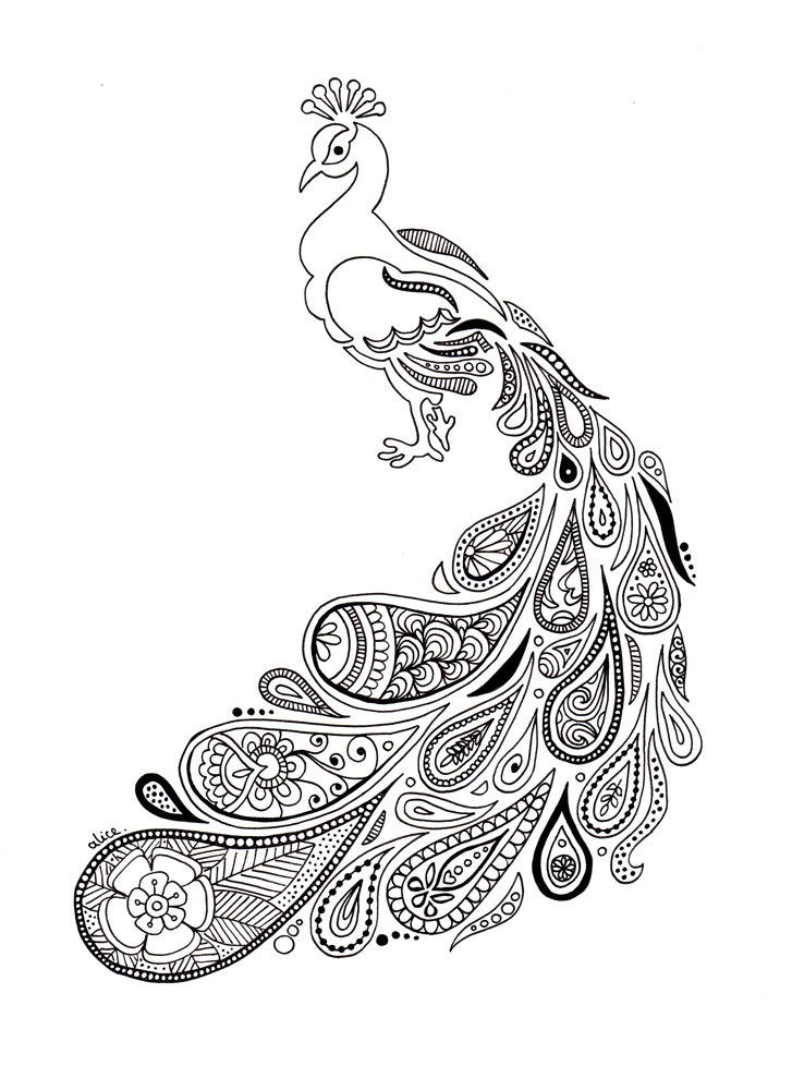 Paon au plumage paisley Alice Gerfault dessins cr ations