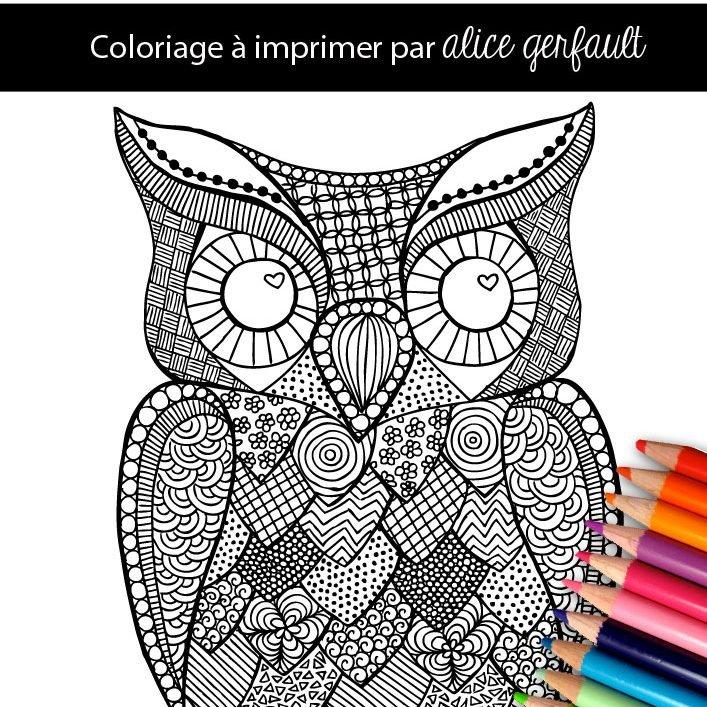 Hibou Coloriage Pour Adulte à Imprimer Alice Gerfault